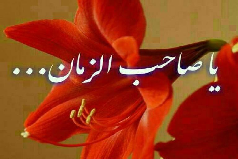 سفارش امام زمان(عج) به خواندن نماز شب