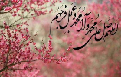 امام علی بعد از پیامبر چه کاری انجام دادند