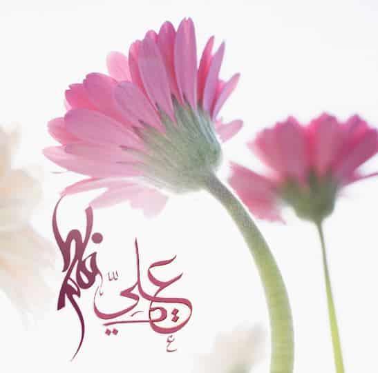معرفی حضرت زهرا(س) توسط پیامبر