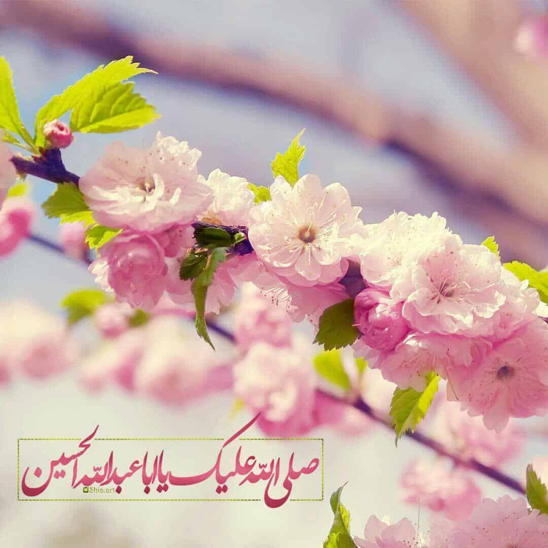 tabreek aayad shabaneyeh 2 - تبریک اعیاد شعبانیه